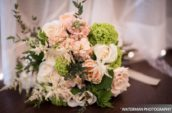 white and beige flowers
