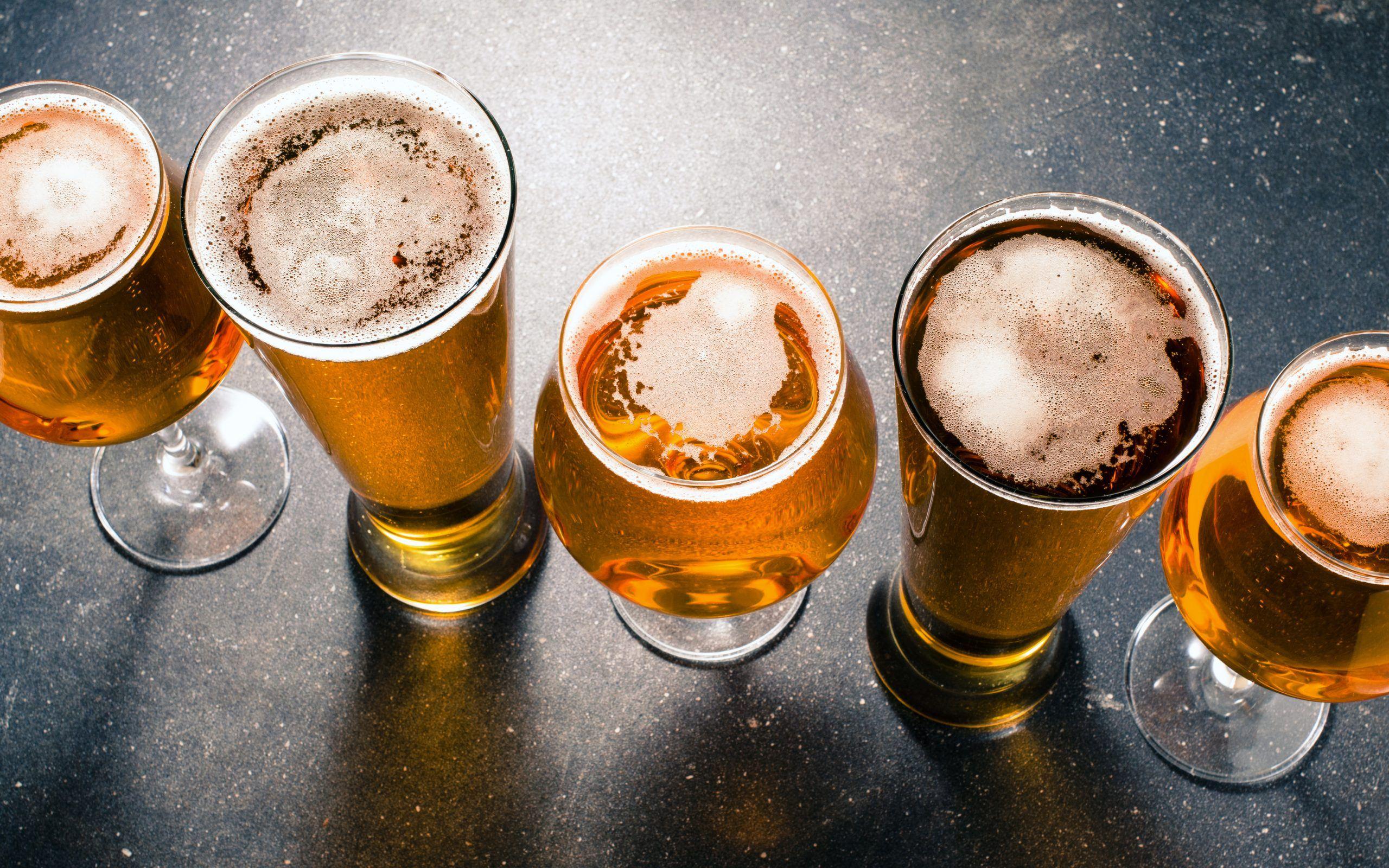 base camp brewing in portland sample beers