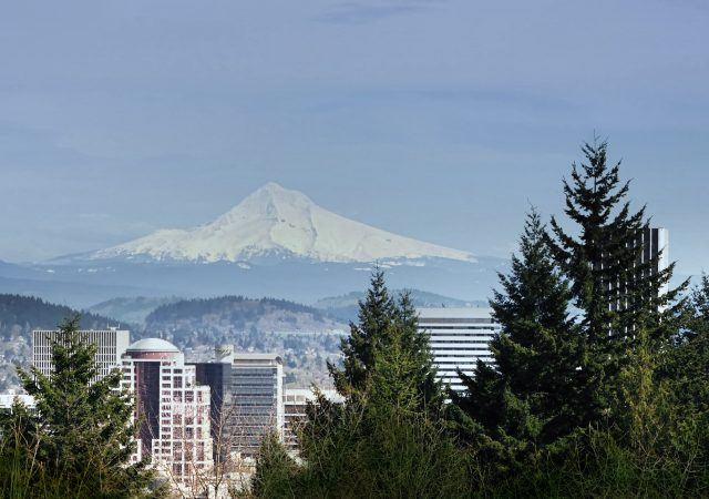 view from washington park in portland