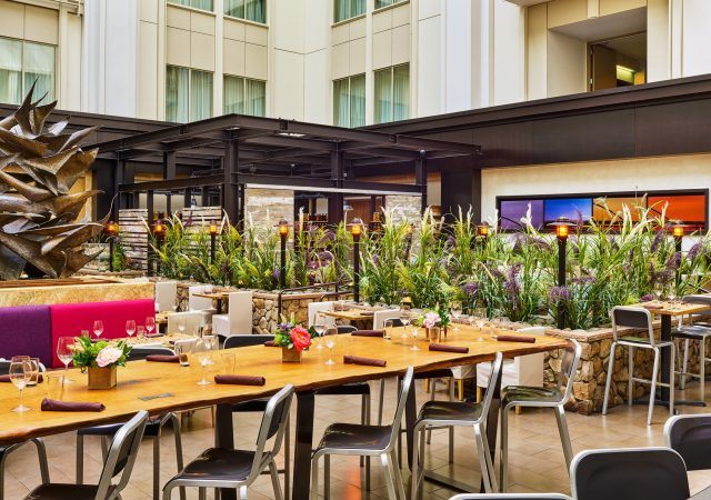urban farmer restaurant dining space at the nines hotel