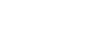 the know wedding network logo