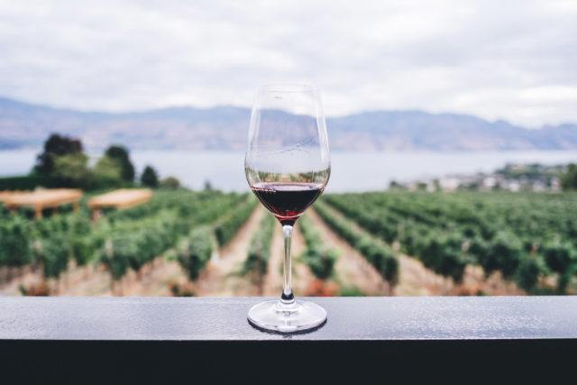 glass of red wine sits atop railing over looking vineyard