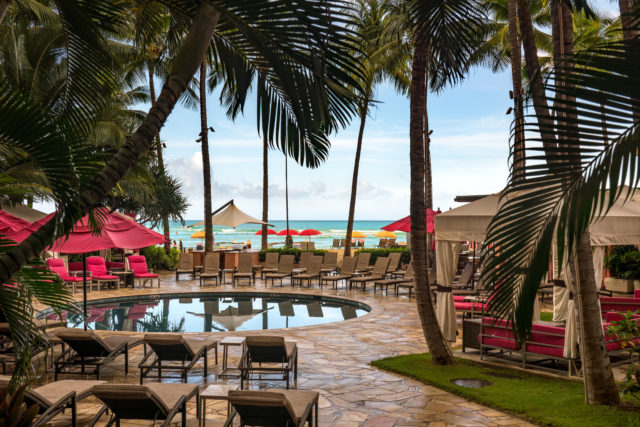 chairs around a pool under coconut trees during daytime