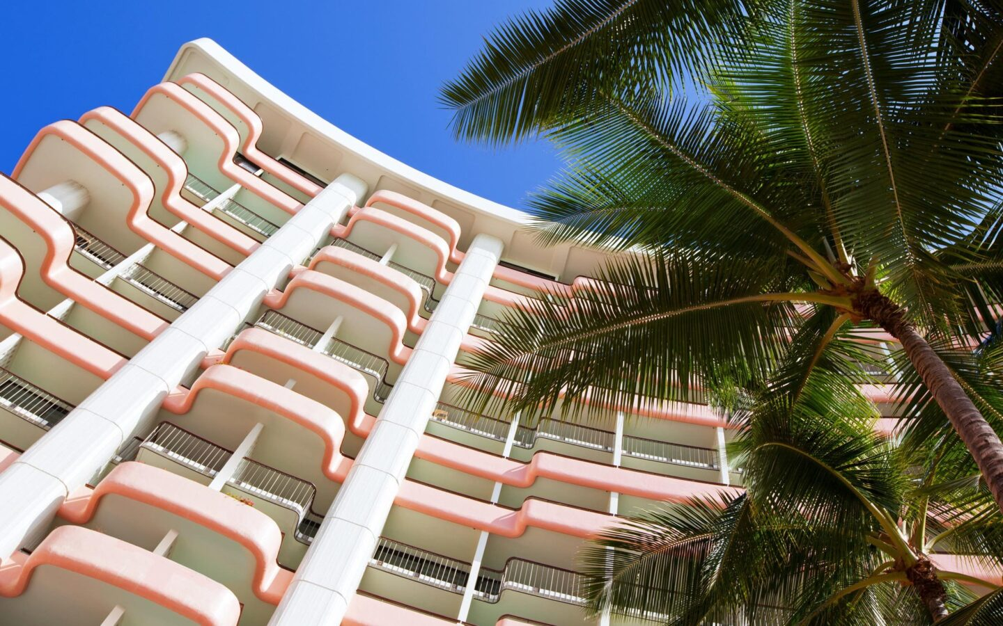 white and pink building with palm tree