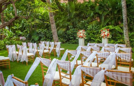 Chairs setup in garden for wedding