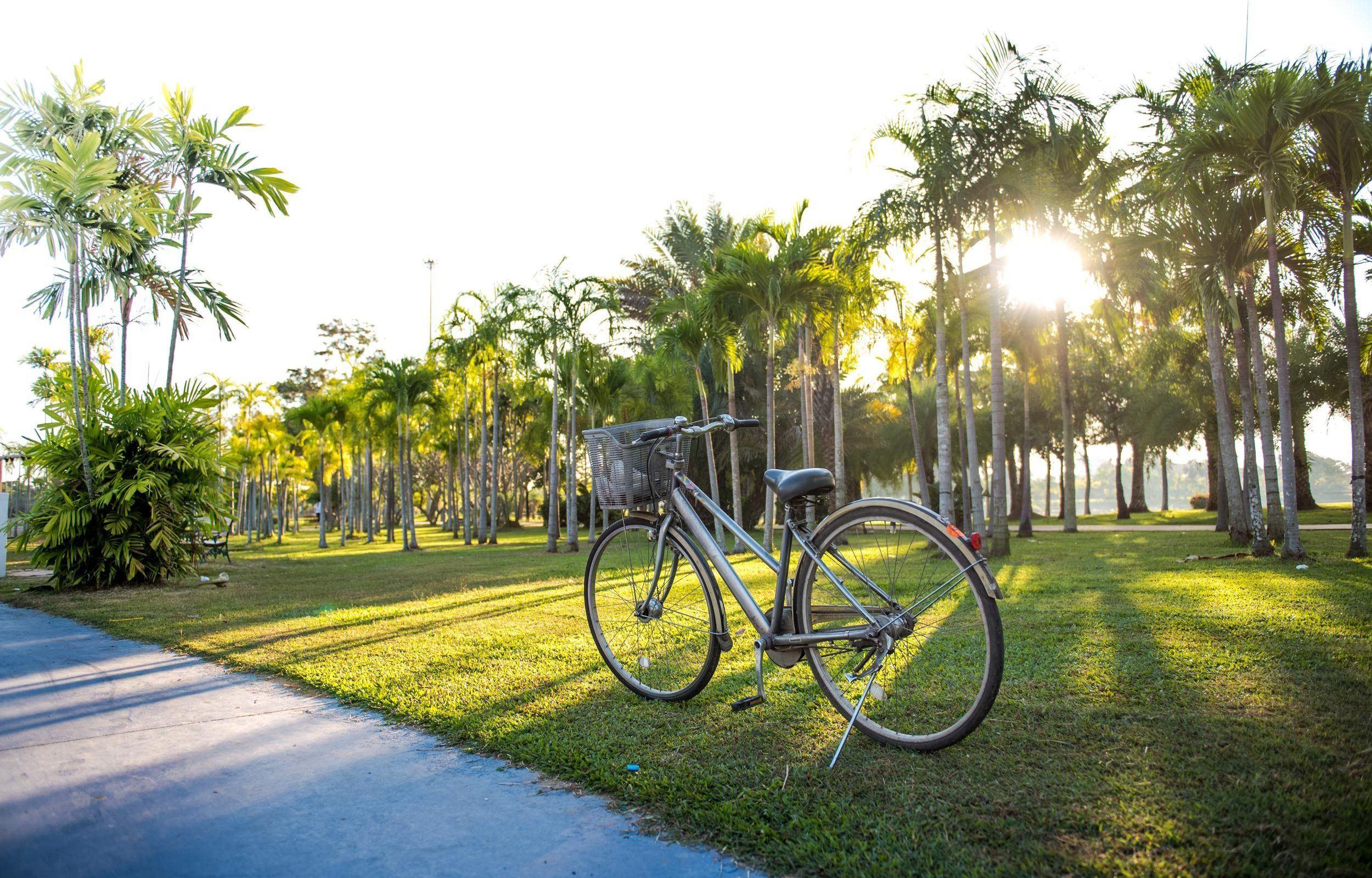 royal-hawaiian-biki-hawaii-bike-rentals