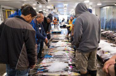 men inside fish market building