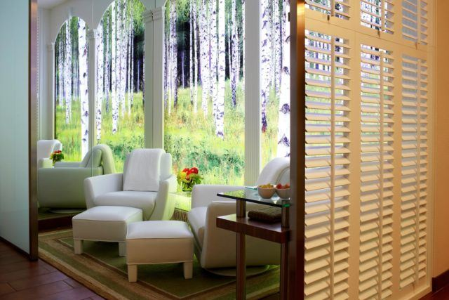 Room with white chairs, wood shutters and a bright mural of a birch tree forest