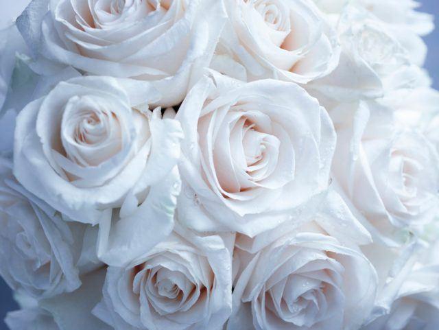 The-Chatwal-Manhattan-Wedding-Venue-Flower-Texture