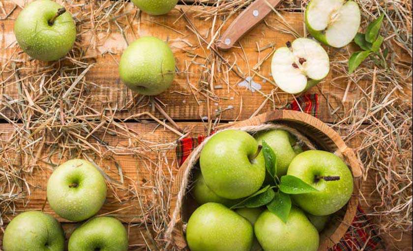 green apples in a basket surrounded by loose green apples and hay