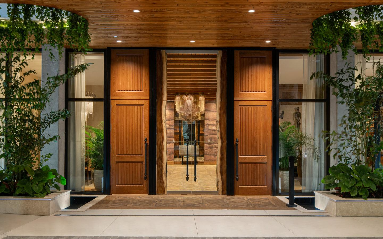 brown wooden door with green plants