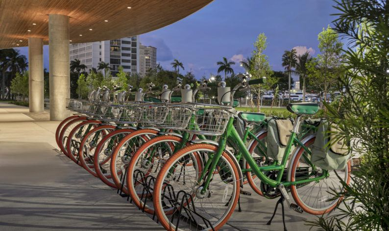 guest bicycles