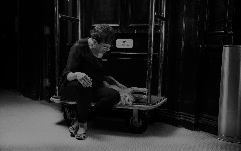 woman sitting on luggage cart petting cat