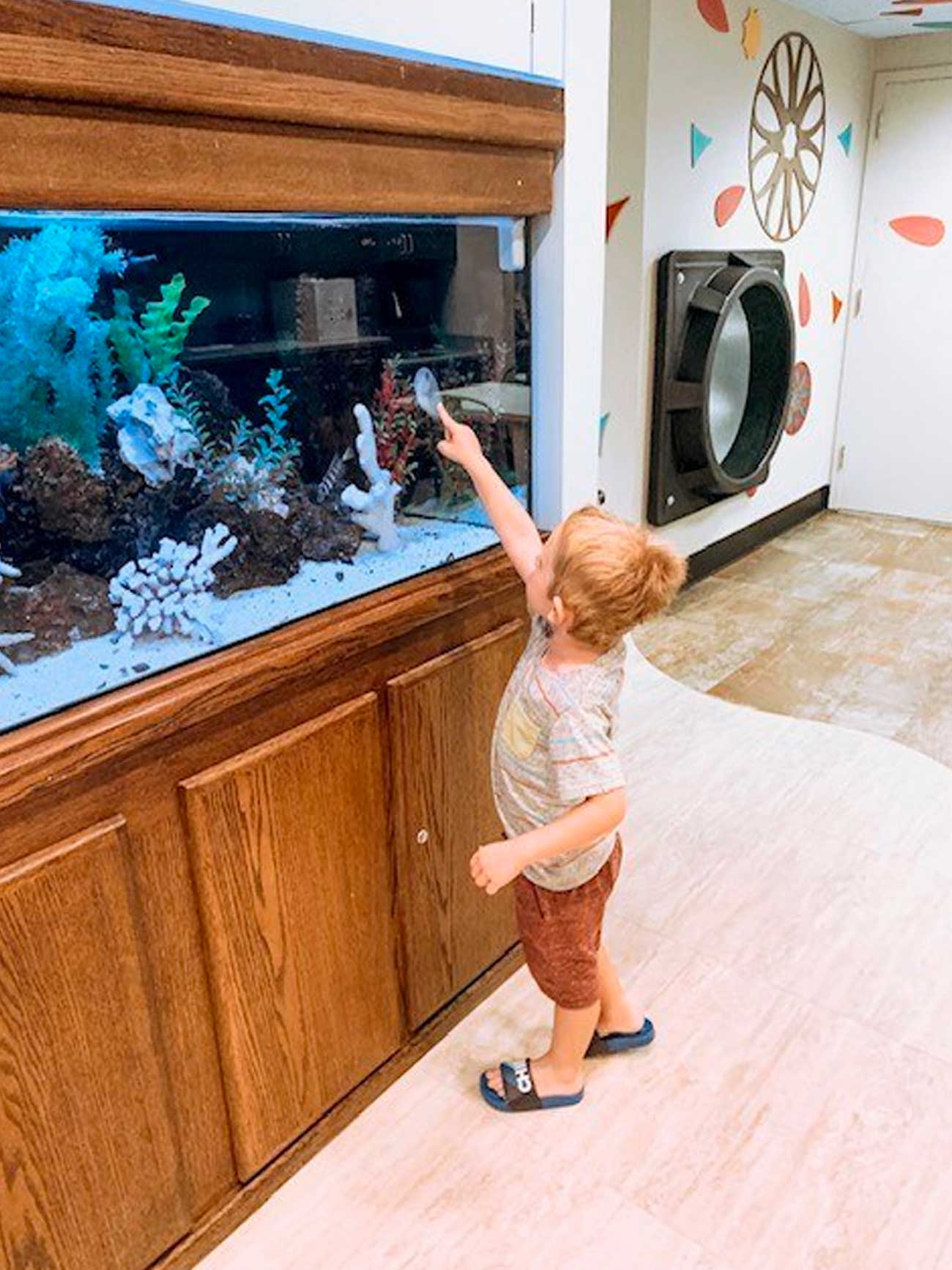 young boy points to fish in the aquarium