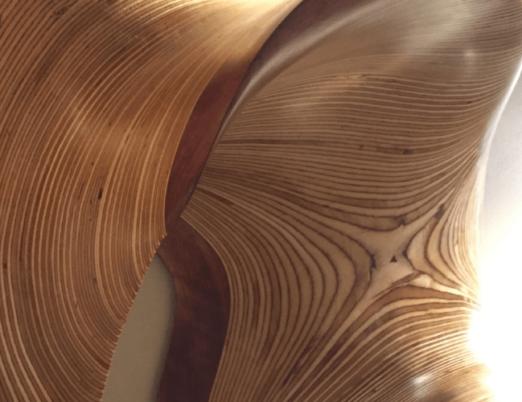 wall hanging wood sculpture close up wood grain detail by Kerry Vesper
