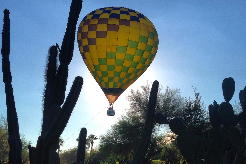 hot air balloon rising above cacti