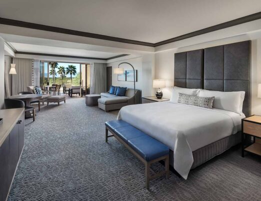 Spacious Guest Room - King Bed