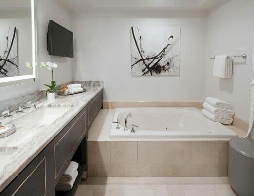 bathroom with double vanity bathtub and tv mounted on wall