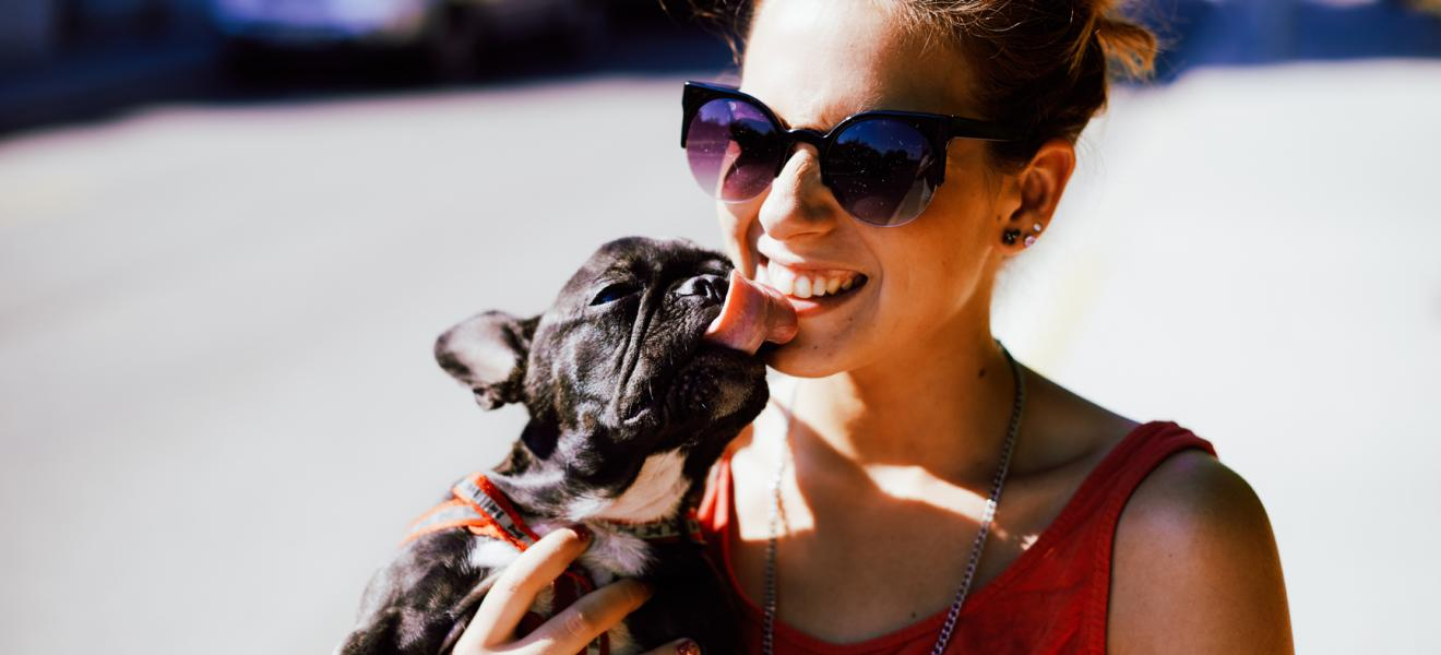 young woman with Pretty black french bulldog puppy walking at th